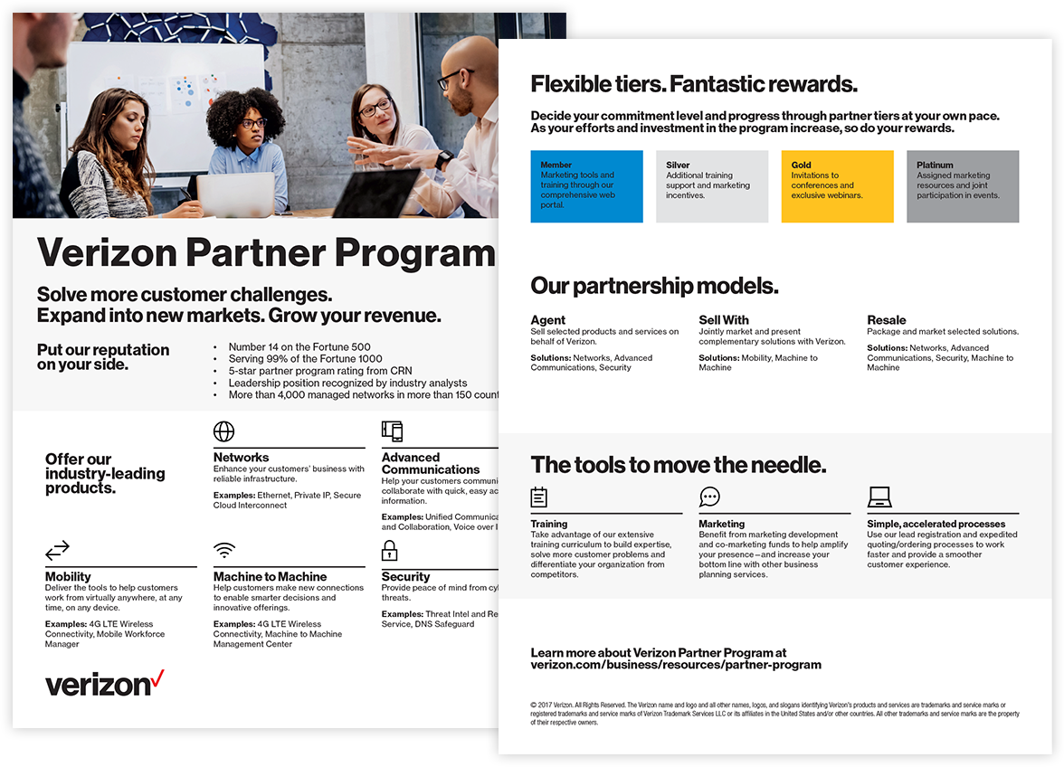 Program overview for partner recruitment